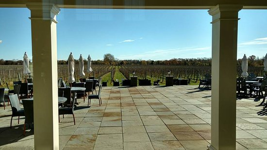 Mattituck, Estado de Nueva York: Beautiful view from the tasting room overlooking the vineyard