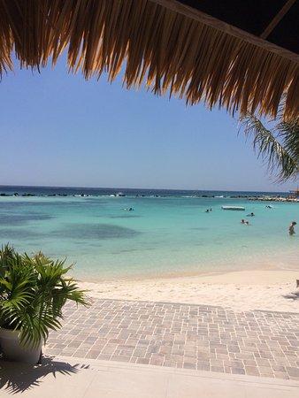 Amazing Vacation in Aruba