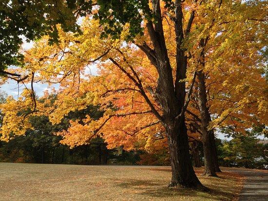 Staatsburg, NY: Autumn