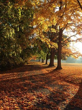 Staatsburg, Нью-Йорк: Autumn