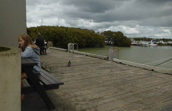 Thames, Nieuw-Zeeland: Al fresco dining on the Wharf