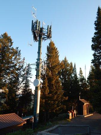 Signal Mountain Summit Road Foto