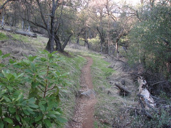 Penn Valley, CA: The trail up / down from the meadow