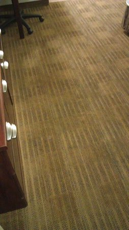 Extended Stay America - Sacramento - White Rock Rd.: streaked, stained carpet