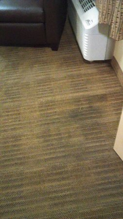 Extended Stay America - Sacramento - White Rock Rd.: wear socks and slippers or you will have black feet