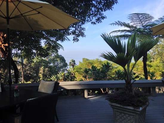 Ohi'a Park Estate : The deck is much larger but this is a slice of the view...