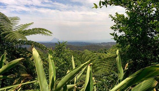 Maleny, Australia: View of Glass House Mountains