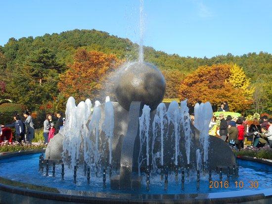 Gambar Daegu