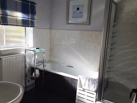 Fownhope, UK: Large twin/king bathroom