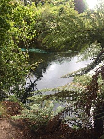 Hamurana, Nueva Zelanda: photo5.jpg