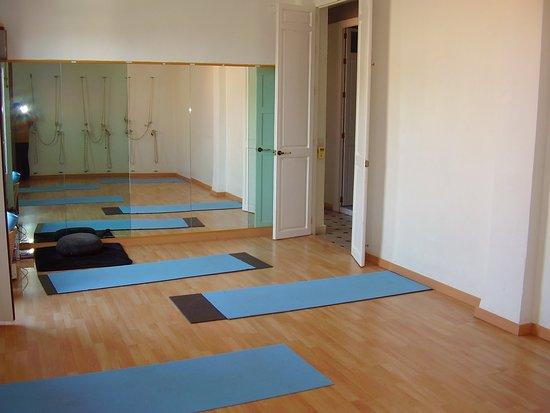 Centro de Yoga Milarepa