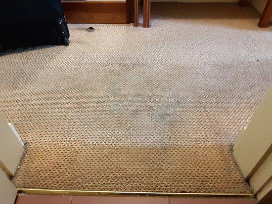 Grafton Capital Hotel: Teppichboden vor dem Badezimmer. Die schwarzen Flecken sind teilweise verkrustet.