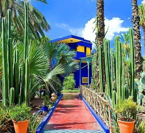Jardin De Majorelle | Mon Blog Jardinage