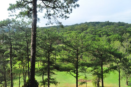 Villa Cordillera : View from the restaurant of the hotel