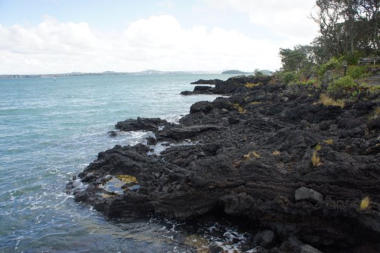 Fullers Rangitoto Volcanic Explorer Tour: photo2.jpg