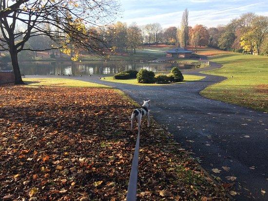 Handsworth Park: photo0.jpg