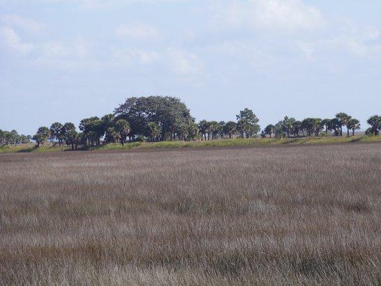 St. Marks National Wildlife Refuge: Florida Trail