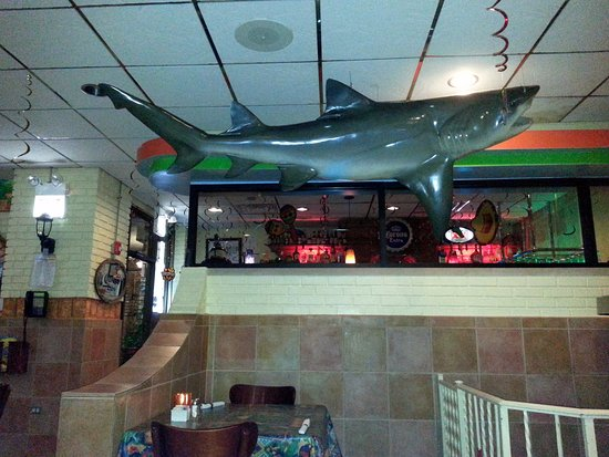 Harwood Heights, IL: a shark watching over the dining area at Las Plamas