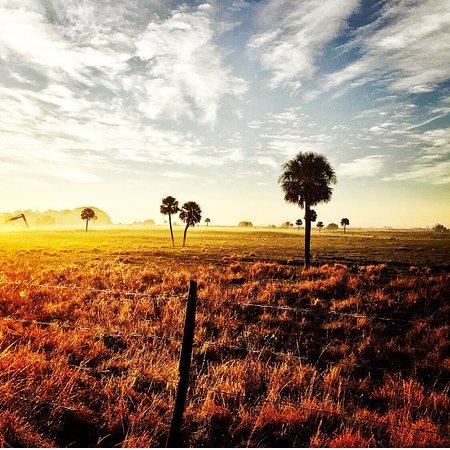 LaBelle, FL: photo1.jpg