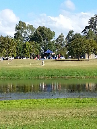 Benowa, Avustralya: Plenty of space, some folks bring their own pop-up shade!