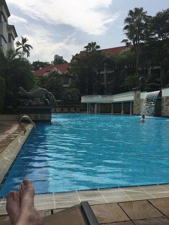 Treetops Executive Residences Singapore: Pool