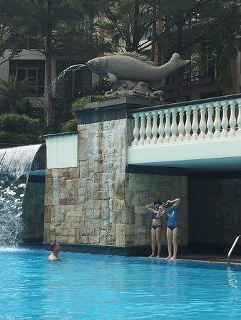 Treetops Executive Residences Singapore: Pool area