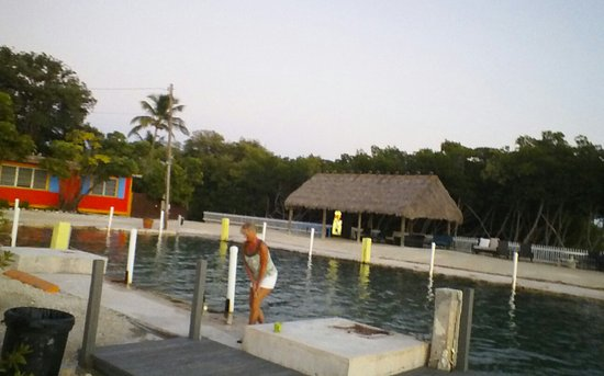 Conch Key, FL: me on dock taking photo in towards tiki hut. where continental breakfast is seved. 8am-10am
