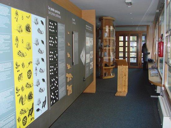 Centro visitatori Valsavarenche
