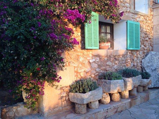 Ses Salines, Spain: photo8.jpg