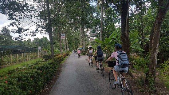 VietnamTrails