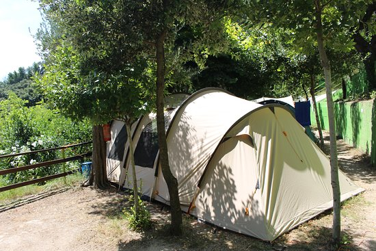 Camping Club Internazionale: campingplaats