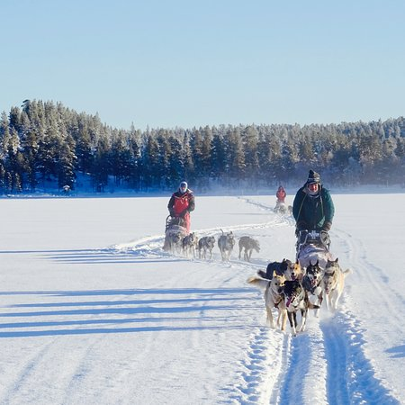 Overkalix, Suécia: Cross the Arctic Circle