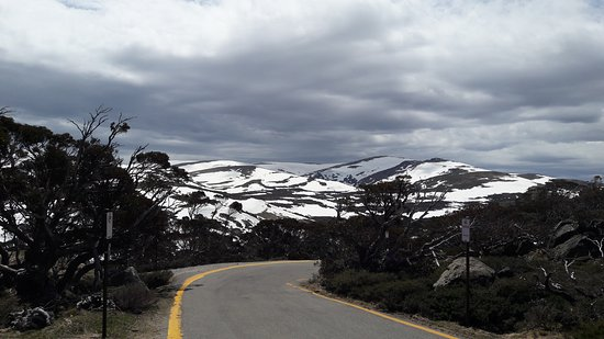 Charlottes Pass, Austrália: Snow Gums Boardwalk
