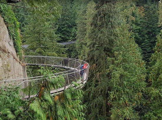 North Vancouver, Canada: skywalk