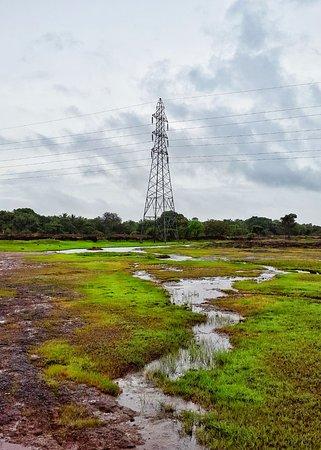 Madayipara: Its all green in rain