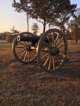 Parkers Crossroads, TN: Historic cannon