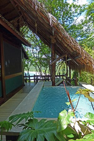 private plunge pool + swing bed next to cabin