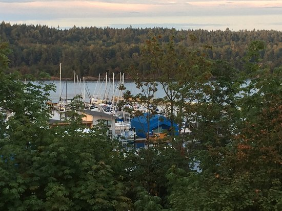Ladysmith, Canadá: view from the gallery window to marina