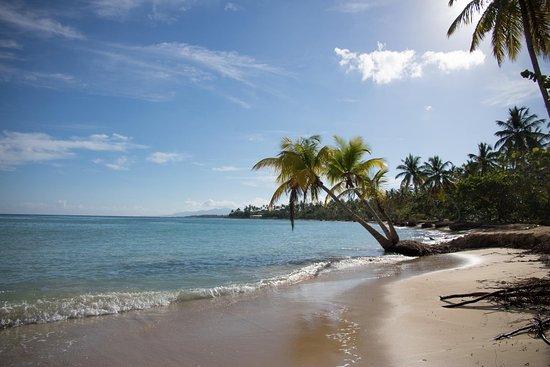 Grand Bahia Principe El Portillo: Strand