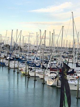 Sails Restaurant : photo3.jpg