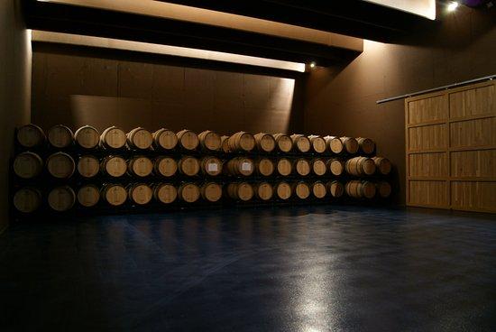 Castillazuelo, إسبانيا: Sala de barricas donde se envejece el vino