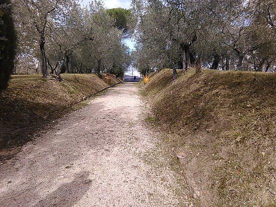Monteleone Sabino, อิตาลี: ingresso x cerimonie