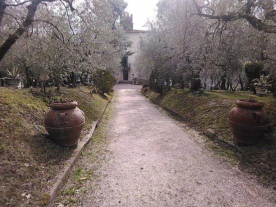 Monteleone Sabino, Włochy: ingresso x cerimonie