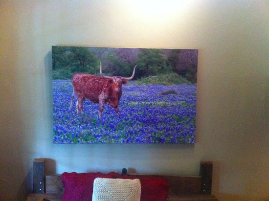 Gruene Mansion Inn Bed & Breakfast: Inside the Bluebonnet Lodge room