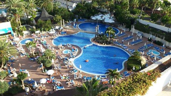 Best Tenerife: IMG-20161112-WA0019_large.jpg
