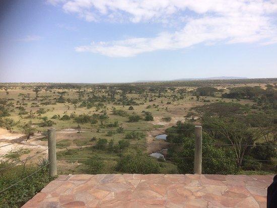 Eagle View, Mara Naboisho: photo0.jpg