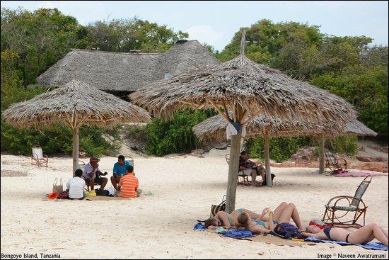 Image result for bongoyo island