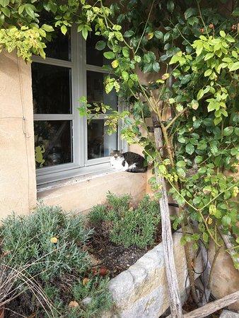 Cabrieres-d'Avignon, France: Clos De La Fontaine