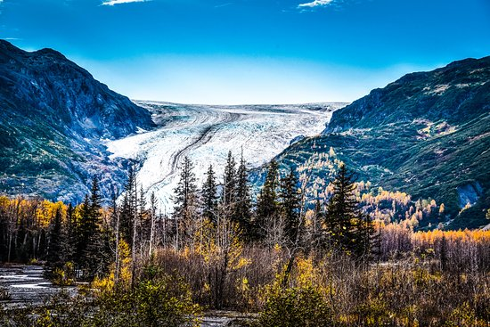 Kenai Fjords National Park, AK: Exit Glacier view from near the Park Entrance