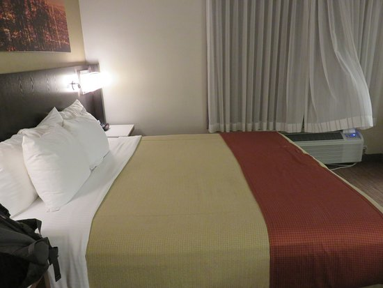 BEST WESTERN Royal Palace Inn & Suites: Large room and bed